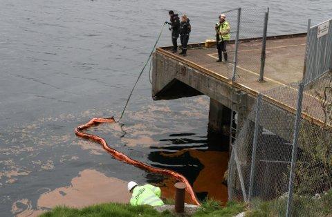 Fiskeoljelekkasje på Cargill 9. mai.