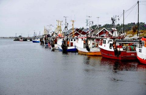 SATSER: Borg Havn ønsket å sikre at det fortsatt skal være service for fiskeflåten i Utgårdskilen. Nå har de brukt millioner på eiendom for å sikre lokalitetene til trålservicebedriften Egersund Trål – og senere i år skal det brukes nye millioner på en ny og større fiskekai.