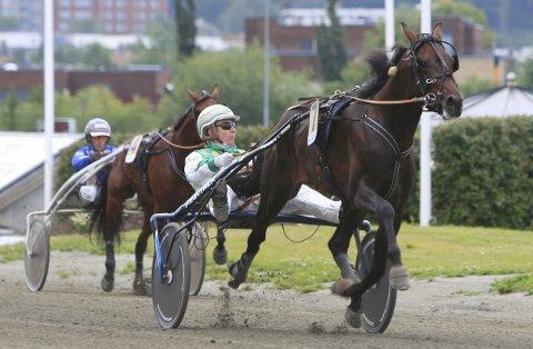 NY SEIER: Phantasm Soa vant en ny seier på Leangen Travbane.           Foto: Hesteguiden.com