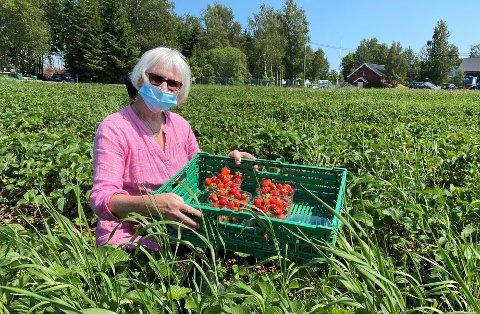 SELVPLUKK: Denne uken var Mette på selvplukk i Rygge.