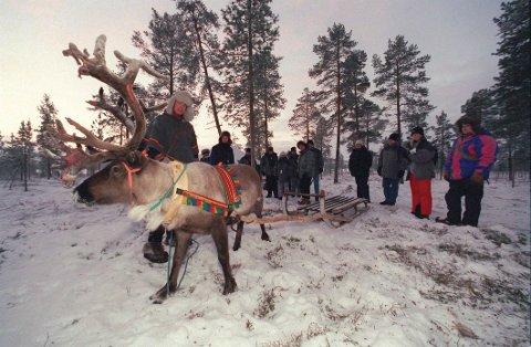 UTSATT: Ni av ti reindriftssamer i Sverige er utsatt for rasisme ifølge en fersk rapport.