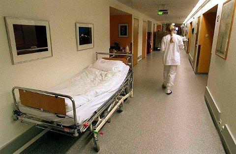 ØNSKES: Innlandet trenger 350 sykepleiere og 100 snekkere. Foto: ANB