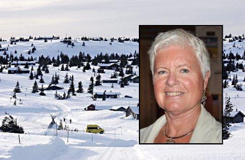 IDYLLISK: Det er idyllisk på Sjusjøen, men nå ser det ut til at flere hytteiere har fått nok av de stadig økende avgiftene. Anne-Marie Flottorp fra Larvik har skrevet brev til ordføreren i Ringsaker.  (illustrasjonsfoto: Asmund Hanslien)