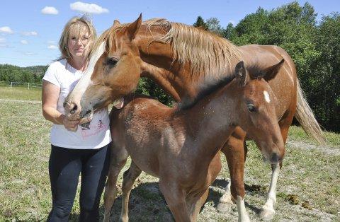 HELL I UHELL: Den lille hoppa Quite A Dream har fått ny mamma fra Drammen etter at hennes egen døde av silosyken. Nå vandrer de lykkelige sammen på beitet ved Kosepusen Feriehus i Hærland, til stor glede for eier Marianne Frostrud.
