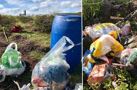 Den blå tønna på bildet inneholder vanligvis salt som sauene i fjellet kan slikke på. Torsdag ble den funnet full av søppel. Foto: Privat
