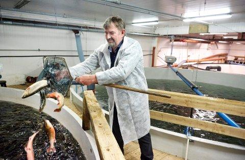 STARTER OPP: Gründer John helge Inderdal har reist 20 millioner kroner i ny kapital, og sikrer seg boet etter konkursen i oppdrettselskapet Blåfjell AS.