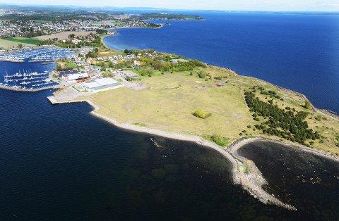 TIL BOLIGUTVIKLER: Den nærmeste delen av dette området på Vallø skal selges. Bildet er tatt i 2014, før opprenskningen startet.