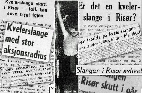STOR OPPMERKSOMHET: Kvelerslangen i Risør fikk stor oppmerksomhet i avisene i månedsskiftet juli-august 1969. Her er det Richard Zaal som holder opp den døde slangen.