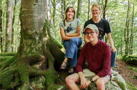 Synne, Sunniva og Sigvald spelte laurdag gratiskonsert i den freda bøkeskogen på Vollom.