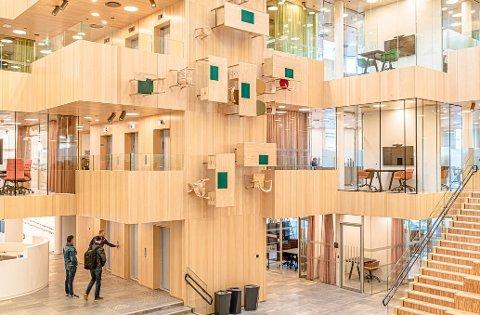 Fygle-firmaet Interiørservice AS var underentreprenør på det nye rådhuset i Bodø. Nå har de saksøkt Gunvald Johansen Bygg AS.