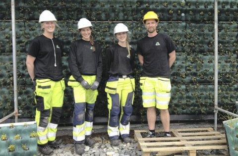 Karoline Helleland, Johanne Ellingsen, Maren Liland og Andre Pletten har plantet ut de 17.000 plantene.