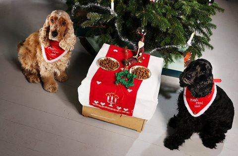 Pyntede hunder som koser med litt julegodt på dekket bord foran juletreet.