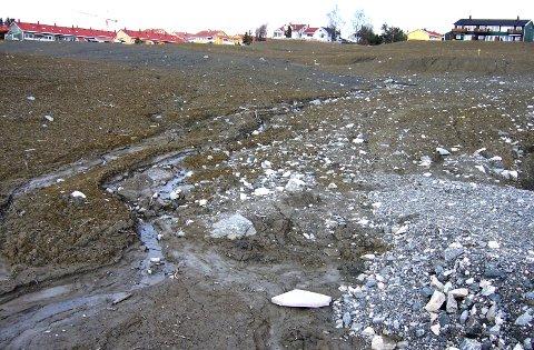 2008: Steinar Myrabø inspiserte det nye boligområdet som var under utbygging. Han uttrykte bekymring over forholdene i og ved Nystulia.