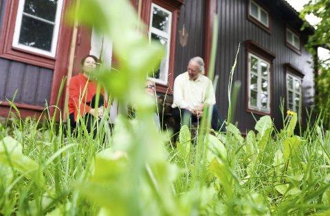 PÅ GJENGRODDE STIER: Gresset er grønt rundt Volla gård, og Elin, Hanne og Gisle har mange gode minner fra huset. Snart skal gress og husene i Volla erstattes av ny riksveg.