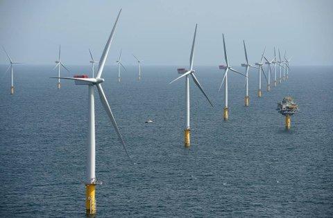 Sheringham Shoal, England 20120921. Den norskeide havvindparken Sheringham Shoal består av 88 vindmøller plassert utenfor kysten av Norfolk i England. Norges først vindmøllepark til havs skal dekke strømforbruket til 220.000 britiske husstander. Statkraft og Statoil eier halvparten hver av eierselskapet Scira.  Foto: CHPV/Scira Offshore Energy / NTB scanpix
