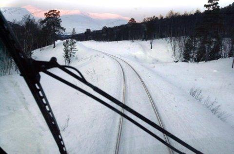 PÅKJØRT: Tre elger ble påkjørt av toget i Svenningdal.