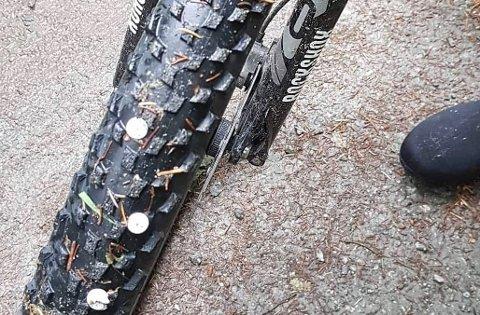 STIFTER: Flere syklister fikk ødelagt dekkene sine av stifter som lå strødd på strekningen Kåsen-Tubakken søndag ettermiddag.
