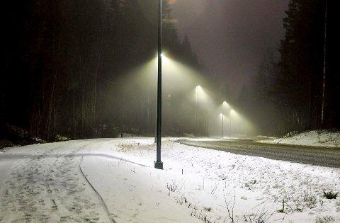 Lyser opp: Etter en lang ventetid kan alle som bruker Gjellebekkveien glede seg over opplys vei og gangvei.