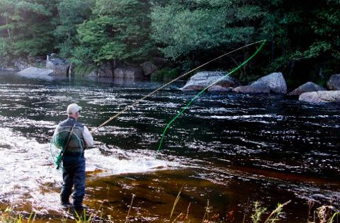 FØRSTE JUNI: Første juni starer sesongen for laksefiske.