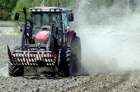 MANGE ERSTATNINGSSAKER: Rundt 300 bønder har allerede søkt til Fylkesmannen i Østfold om erstatning for avlingssvikt.