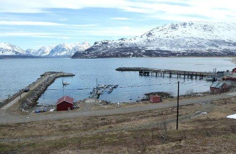 TO MOLOER: De to moloene er begge rundt 100 meter lange. Innenfor ligger blant annet en flytebrygge og fergeleiet på Ullsfjordforbindelsen.
