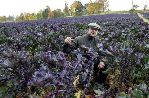 Per Odd Gjestvang ved Vang gård har enerett på rosettkål i Norge. Fredag kveld vant han pris.