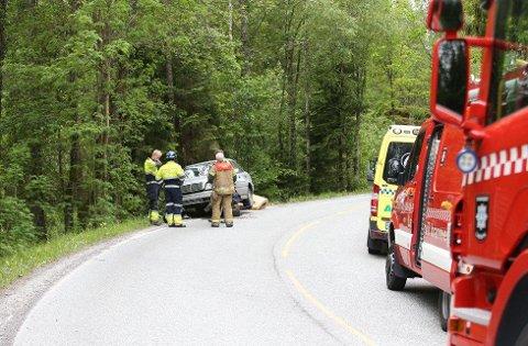 En 52 år gammel mann fra Sandefjord omkom i en ulykke i Tvedalen i Larvik kommune. ARKIVFOTO: GEIR ERIKSEN