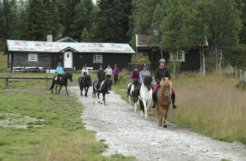 GODKJENT: Rendalen fjellridning i Rendalen er en av totalt 14 godkjente hestebedrifter.