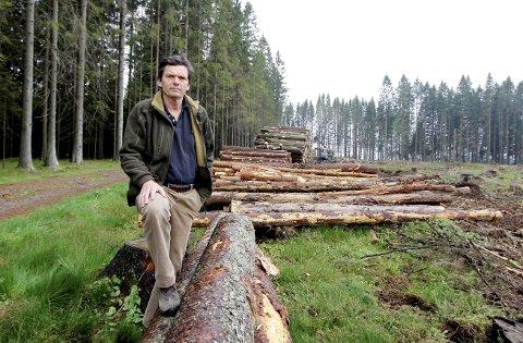Kurs: Knut Østby tilbyr skogeiere gratis kurs for å få økt lønnsomhet i skogen.