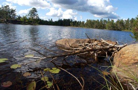 VESTFJELLA: Hytta det er snakk om ligger åtte meter fra Steinvannet, som ligger i området Vestfjella ikke langt fra Halden-grensa.