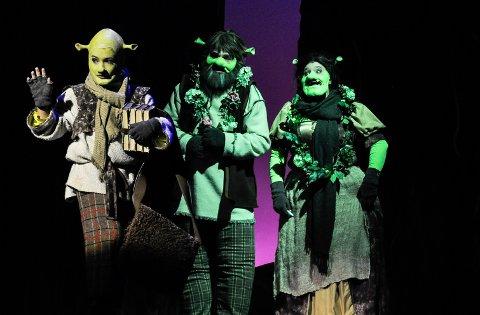 FØRSTE GANG I NORGE: Rundt 160 aktører står på scenen under Sandefjord Teaterforenings «Shrek»-musikal.