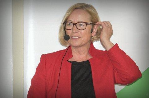 FEIGT: - Det er feigt av Sveinung Rotevatn å vise til Statsforvalteren når det i realiteten er departementet som krever at de skal ta hensyn til «om det kan være» en binne i området, mener stortingsrepresentant Marit Arnstad.