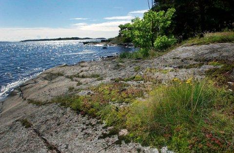 ÅTTE MILLIONER: Nøtterøy kommune kjøpte eiendommen Dunholmen på 25 mål i 2000. Kommunen fikk fem millioner kroner i statlig bidrag.