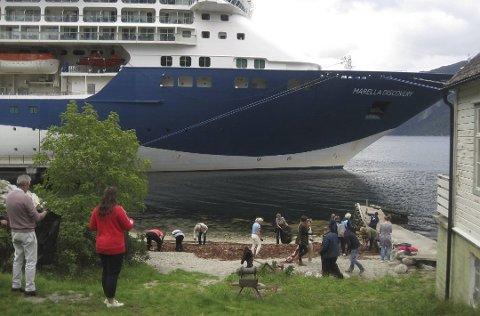 Cruisegjester og mannskap ryddet i fjæresteiene i Eidfjord.
