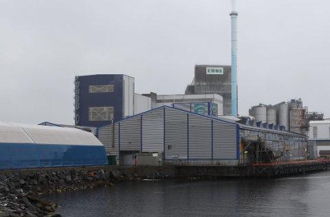 PELAGIA FLORØ: Fabrikken ligg stort sett ubrukt i Gunhildvågen . Pelagia ønskjer å nytte seg av forkjøpsrett for å eige anlegget sjølv.