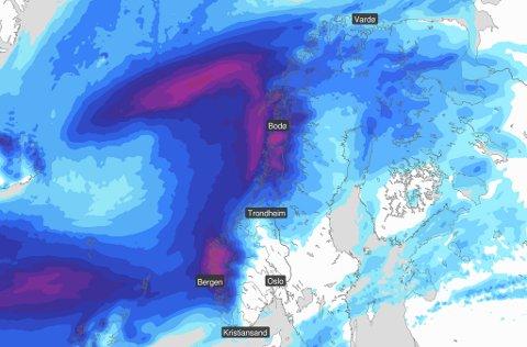 VÅTT: Dette kartet publiserte Meteorologisk institutt måndag. Lilla farge markerer stadane der det er venta mest, og som vanleg er det ein svær lilla flekk over Firda sitt dekningsområde.