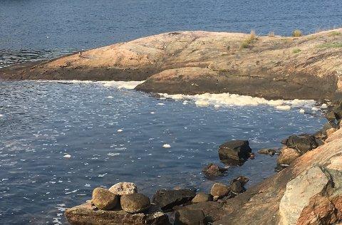 HVITT SKUM: Sånn ser fjorden ved Svinesund ut nå.