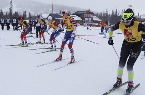 SNØMANGEL: Det er ikke nok snø til å arrangere sesongens første skirenn. Bildet er fra NNM og viser  Emilie Ågheim Kalkenberg som veksler med Benedicte Stien Schreiner. De to gikk Skonseng inn til en 4. plass i seniorklassen. Her veksler de for andre gang og er helt oppe i teten. Foto: Per Vikan