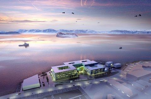 Nytt sykehus: Det diskuteres om fylkets nye sykehus vil stå imot ekstra salt og hardt vær.