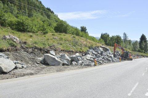 TOMTEKJØP: Utbyggjarane av Neslia Øvre har bede kommunen om deltaking i prosjektet. Kommunedirektøren innstiller på å kjøpa tre tomter i feltet.