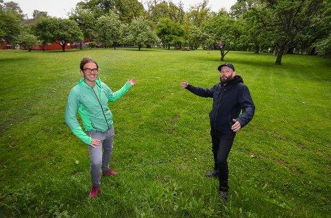 NY PLASS: I år setter vi opp scenen her borte, i hjørnet i sørenden av parken, viser festivalsjef Martin Sørhaug (til venstre) og produksjonsansvarlig Arild Settli.