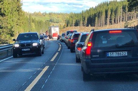 VINDTRØBBEL: Det oppsto lange køer på fylkesvei 33 over Vardalsåsen etter at vindkast felte trær over vegen onsdag.