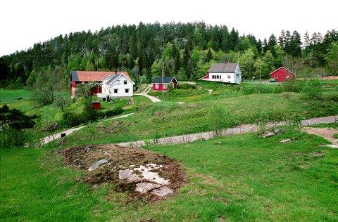ØSTRE HEDRUM er et utpreget rydningsområde fra høymiddelalderen, her representert ved Eskedal-gårdene.