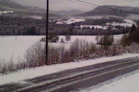 VINTER: Litt sen vinteridyll i Lardal mandag morgen.