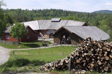 Vidaråsen: Landsbyen i Vestre Andebu består av mange bygninger, blant annet gården.