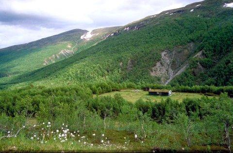 Oversiktsbilde over Gottemsetra i Åmotsdalen (Foto: Dag Svalastog)