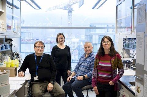 Bjørn Blomberg (nummer to fra høyre) og UiB-forskerne på Haukeland må stoppe å tilby malariamedisin til koronapasienter.