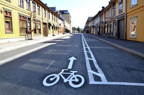 Hilde Jorunn Hoven har hatt anledning til å foreslå stans i planene om sykkelveg, men har ikke gjort det.