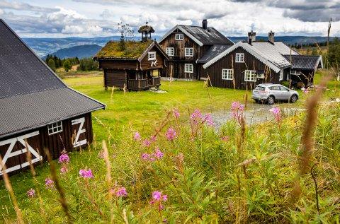 Sverre Gran på Forsetsætra i Gausdal lar plantene vokse for å bevare insektene.