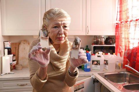 Uholdbart: Annbjørg Benjaminsen hadde uønskede gjester på kjøkkenet i flere uker. Nå håper hun problemet er løst.